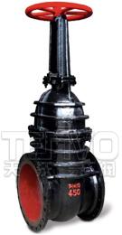 Z44T/W平行式双闸板闸阀